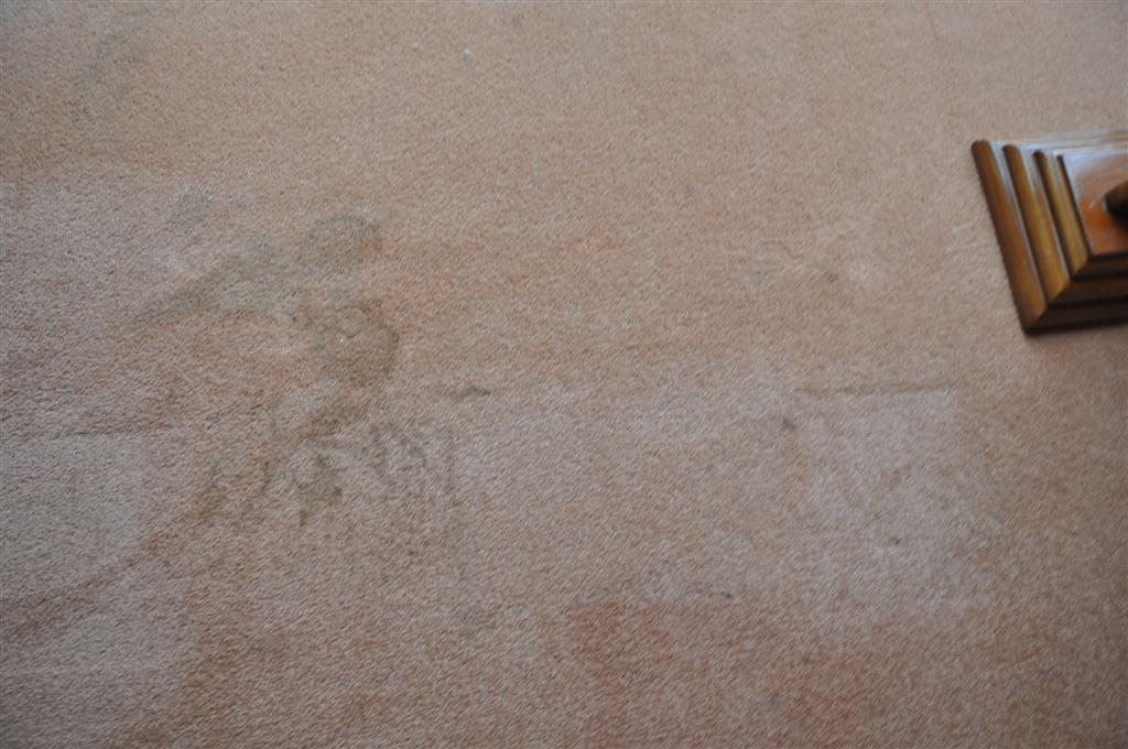 red wine stain on dining room carpet
